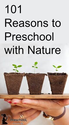 preschool with nature