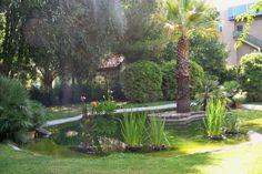 apertura-oficial-de-los-jardines-de-la-casa-rosa