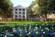 William Peace University - NC