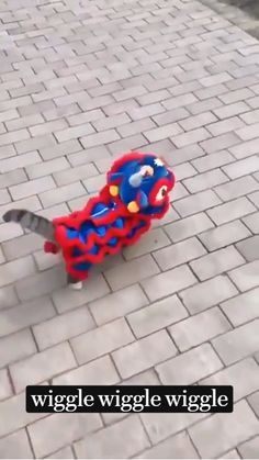 Cute Baby Cats, Cute Little Animals, Cute Cats And Kittens, Funny Animal Jokes, Cute Funny Animals, Cute Animal Videos, Cute Animal Pictures, Cute Puppies, Cute Dogs
