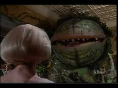 1000+ images about Little Shop of Horrors on Pinterest ...