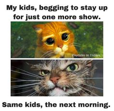 100 Parenting Memes That Will Keep You Laughing For Hours