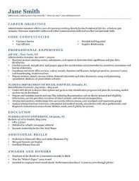 Professional BW Resume Template Ms Word Download  Resume Genius