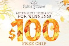 $100 Free Chip Coupon from Palace of Chance casino