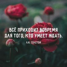 The Words, Mood Quotes, Life Quotes, Russian Quotes, Verse, Inspirational Thoughts, Deep Thoughts, Quotations, Best Quotes
