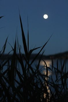 Hier zie je een voorbeeld van indirect licht, het licht van de maan weerkaatst in het water.