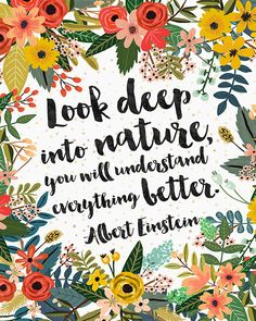 Look deep into nature, you will understand everything better. - Albert Einstein - Art: by OhMammaMia Play Quotes, Words Quotes, Wise Words, Quotes To Live By, Me Quotes, Great Quotes, Inspirational Quotes, Flower Quotes, Nature Quotes