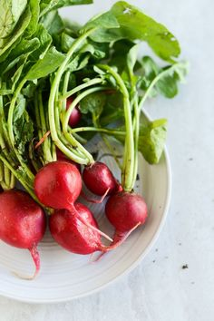 Radishes on Plate | Find a recipe incorporating radishes at this link to Outside Oslo