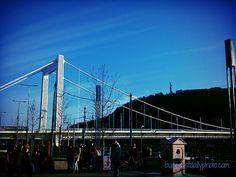 Elizabeth Bridge in Budapest http://www.budapestdailyphoto.com/index.php/2013/11/27/elizabeth-bridge-in-budapest-2/
