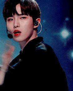 Jaehwan do Wanna One! Jinyoung, Kim Jaehwan, Bias Wrecker, Musical Composition, Foreign Language, Singers
