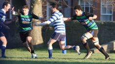 Donald Woodrow reports on Hamilton Rugby Club's Premier B side 14-74 defeat