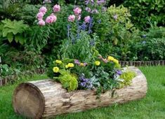 Unusual flower beds and containers are wonderful, creative and unique ideas for your garden design, especially if you feel bored with the same old garden look - Gardening Inspire Unique Garden Decor, Unique Gardens, Amazing Gardens, Garden Decorations, Unusual Flowers, Amazing Flowers, Landscaping With Rocks, Yard Landscaping, Landscaping Ideas