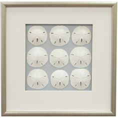 I pinned this Sand Dollar Framed Wall Art II from the Gone Coastal event at Joss and Main!