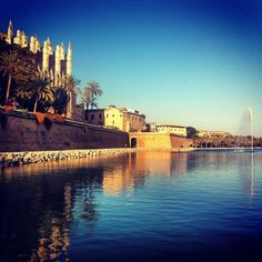 The stunning cathedral in Palma