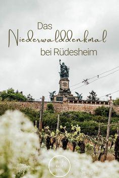 Rheingau - Tipps für einen Ausflug   Rhein Main Blog Maine, Rhein Main Gebiet, Blog, Wine Vineyards, Bike Rides, Blogging