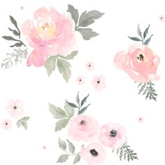 Sweet Blush Roses, Watercolor Floral Flowers - Organic Swaddle, Boppy Cover, Crib Sheet, Changing Pad Cover, Sherpa Blanket