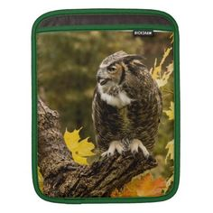 ==> reviews          Autumn Owl iPad Sleeve           Autumn Owl iPad Sleeve you will get best price offer lowest prices or diccount couponeReview          Autumn Owl iPad Sleeve Here a great deal...Cleck Hot Deals >>> http://www.zazzle.com/autumn_owl_ipad_sleeve-205289560618911121?rf=238627982471231924&zbar=1&tc=terrest