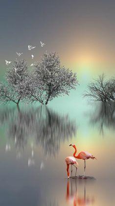 Beautiful Landscape Wallpaper, Beautiful Flowers Wallpapers, Scenery Wallpaper, Beautiful Landscapes, Wallpaper Backgrounds, Beautiful Moon, Beautiful Birds, Beautiful Images, Nature Pictures
