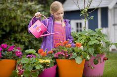 Cand poti sa lasi copiii sa se ocupe de flori? | Gradinar Original.blog