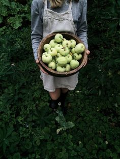 Love these foraged apples in a basket #summer