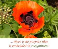 ... there is no purpose that is embedded in #recognition !