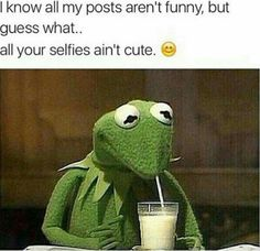 8fa6d45e0d008dc17d4c5a9dc86ec417 kermit the frog meme nice things top 20 funniest kermit the frog memes nowaygirl none of my