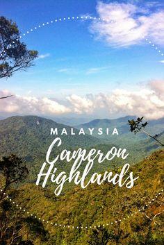 Malaysia mit Kind – Cameron Highlands und seine Land-Rover.