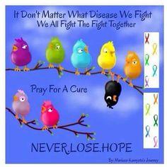 ᘻยℓէᎥƥℓҽ ᏕƈℓҽґσʂᎥʂ ( ͡° ͜ʖ ͡°) 【ツ ᘻᏕ Ӈยɱσґ 【ツ ¯_(ツ)_/¯ ~ It doesn't matter what disease we fight. We all fight the fight together. Pray for a cure. Never lose hope!
