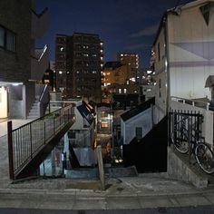 夜散歩のススメ「荒木町モンマルトルの坂」東京都新宿区