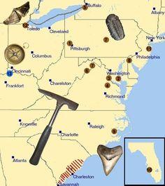 fossil locations activities https://www.pinterest.com/themodernhippie/rocks-fossils/