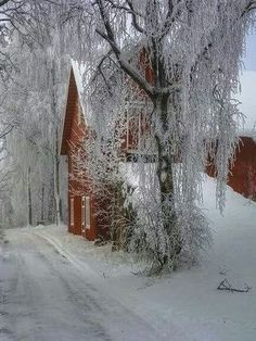Winter-i absolutely love it when that wet, heavy snow falls and sticks to every limb of every tree! Nothing is more beautiful⛄❄❄❄❄❄ Farm Barn, Old Farm, Cabana, Foto Nature, Barns Sheds, Country Barns, Winter Scenery, Country Scenes, Snow Scenes