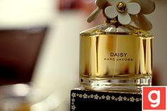 Daisy<3<3