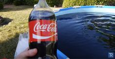 He Filled a Swimming Pool Up With Coca-Cola…The Reason Why Will Shock You! | Whit's Blog