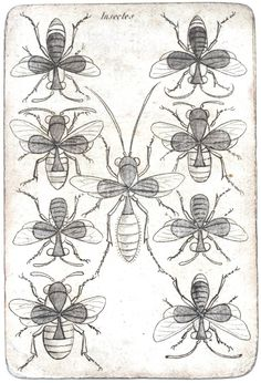 Free printable Vintage playing card eight of clubs #bees