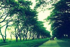 Hacienda Luisita Road in Tarlac