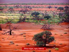 Savana africana.