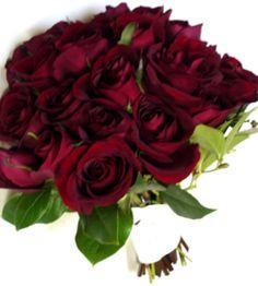 Google Image Result for http://www.rose-gardening-made-easy.com/images/bl2.jpg