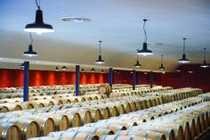 BEMERKENSWERT - Die Fasskeller des Château Rayne Vigneau (AOC Sauternes) mit mehr als 1000 m ist in einem schlichten und eleganten Architekturstil gehalten, bei dem bevorzugt edle Materialien wie Stein und Holz in Kombination mit der Modernität des Betons verwendet wurden