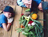 School Gardens Curriculum Links