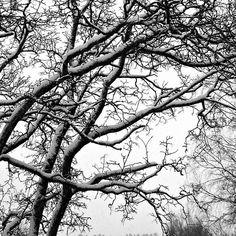 Ensilumi / First snow, Tampere, Finland