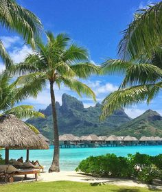 Four Seasons Resort Bora Bora Vacation Places, Dream Vacations, Vacation Spots, Places To Travel, Places To Go, Beautiful Beach Pictures, Beach Photos, Beautiful Places To Visit, Beautiful Beaches