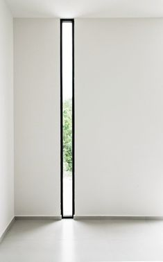 Floor to ceiling narrow window. W41 by Warm Architects. Photo by Zaruhy Sangochian. #window #warmarchitects #narrowwindow #floortoceilingwin in Doors and windows