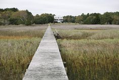 How dreamy to live in a house on stilts among the reeds and wildfowl, a weathered boardwalk for a garden path. House On Stilts, Traditional Landscape, What A Wonderful World, Backyard Landscaping, Landscaping Ideas, Garden Paths, Adventure Is Out There, Pathways, Landscape Architecture
