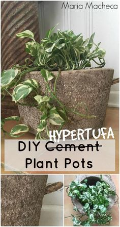 Maria Macheca shares how to make hypertufa plant pots- the easy way!