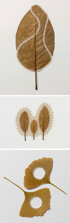 Dried Leaves Crocheted into Delicate Sculptures by Susanna Bauer