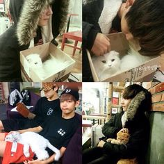 Taehyung/V may be known as the cute, dorky, hyper, goodlooking member of BTS with a deep, sexy voice but do you know that he just REALLY.. REALLY..REALLY love pets?