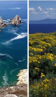 Explore the beautiful islands of Channel Islands National Park with this guide