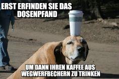 café-contor-ironie