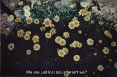 We are just lost souls, aren't we? 🌹