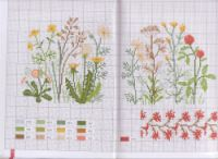 Gallery.ru / Фото #3 - mango flores - geminiana